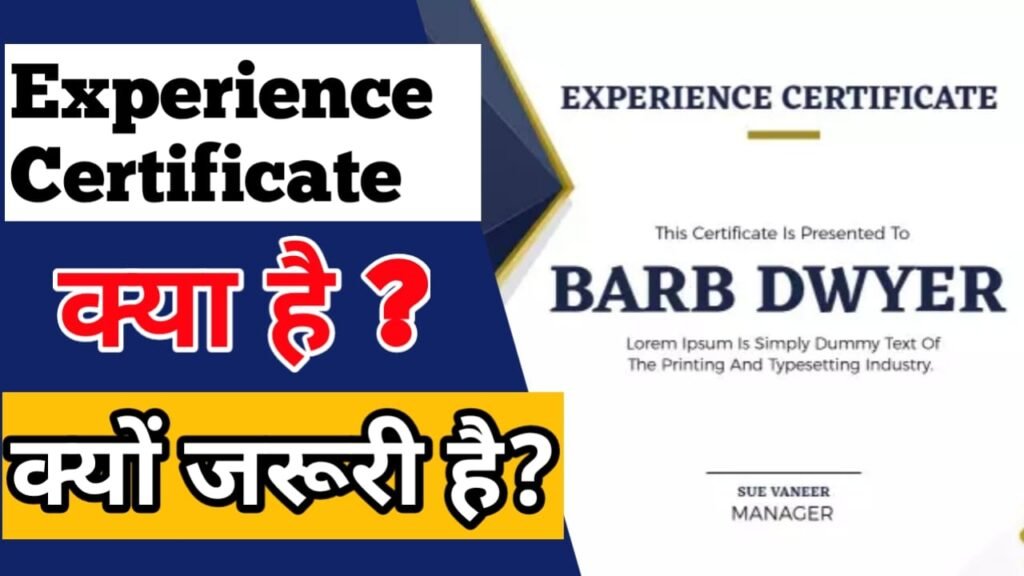 experience certificate , experience letter format